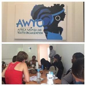 African Women & Youth Organization